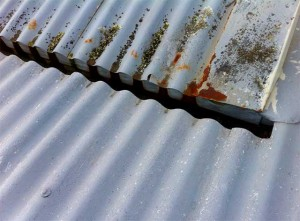 Rusting Internal Guttering Wellington